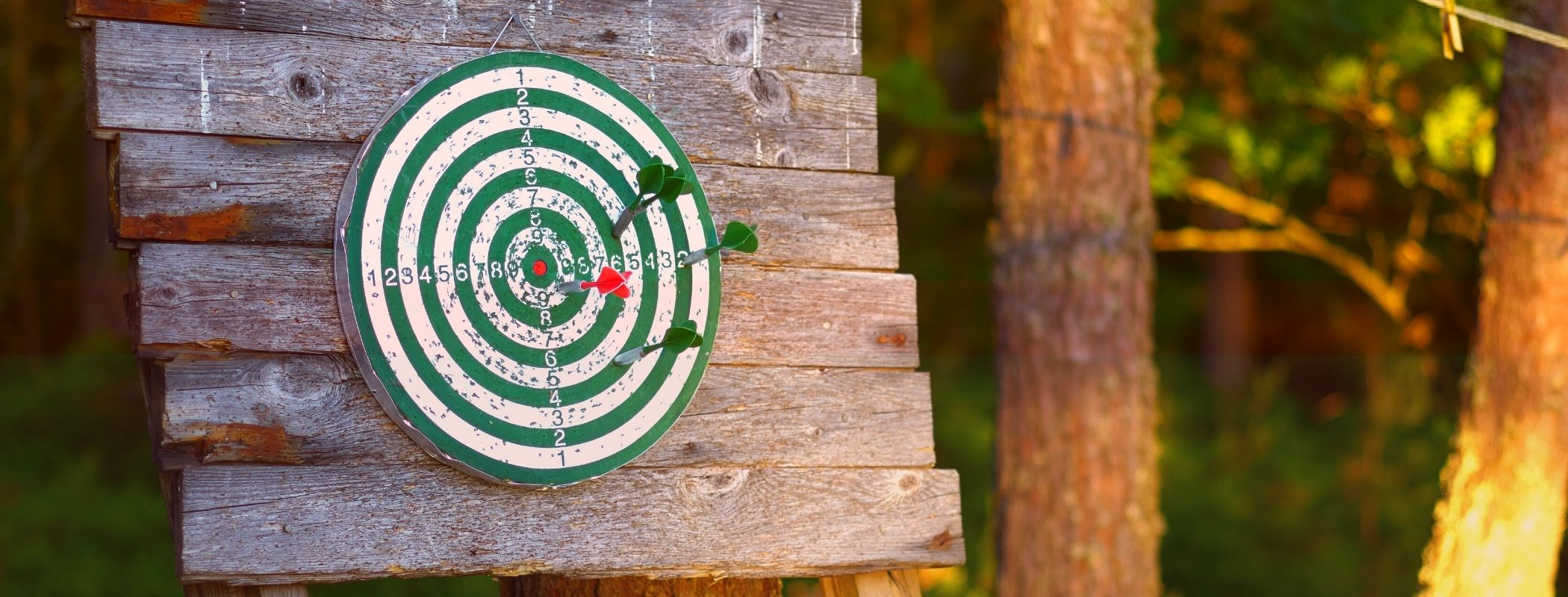 Best Dart Board For Outside For 2021 ( Ultimate Choice To Have Fun)